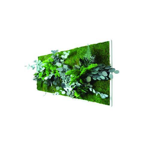 Pflanzenbild groß 3
